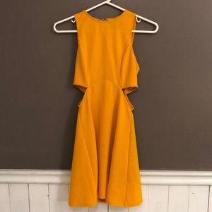 Top Shop dress (Never Worn)